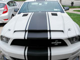2008 Shelby GT500 Mustang