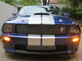 2008 Shelby GT Convertible