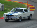 1966 Shelby GT350 Tribute