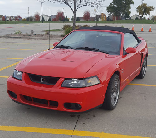 2003 mustang cobra svt convertible. Black Bedroom Furniture Sets. Home Design Ideas